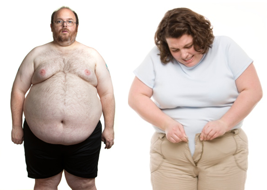 herbal remedies for obesity