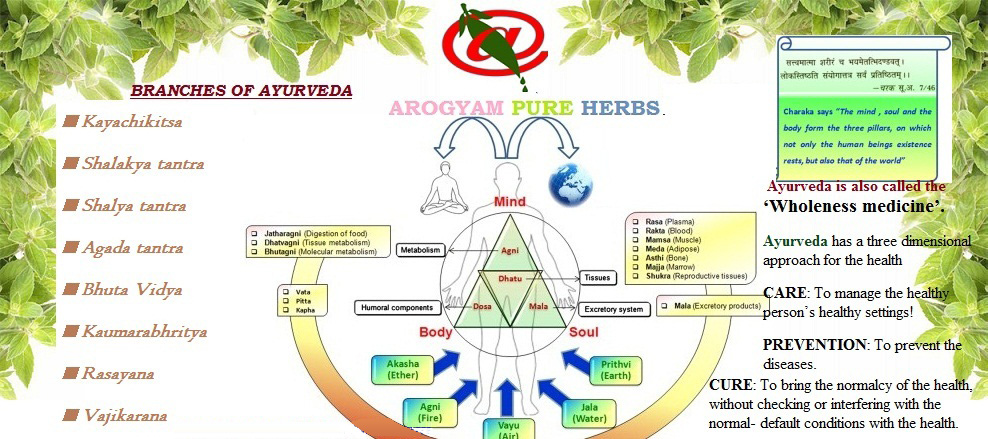 ayurveda-article
