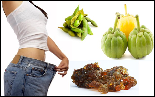 ayurvedic-medicines-for-weight-loss