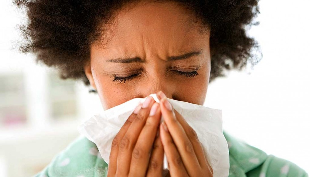 Herbal Remedies for Allergy