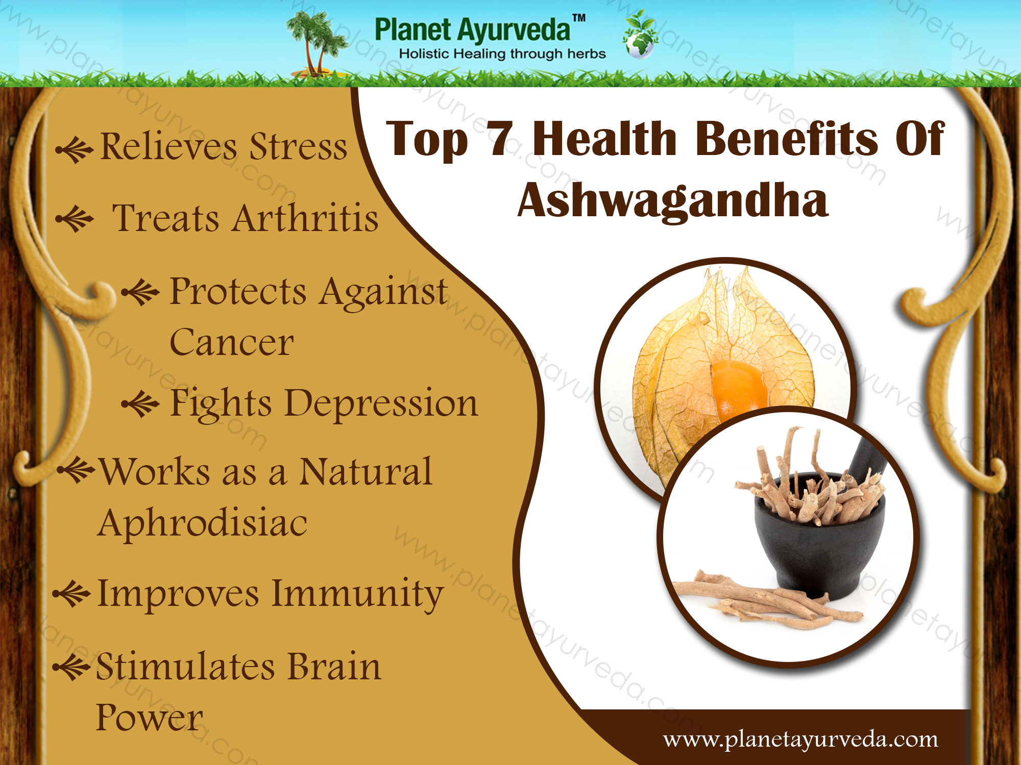 benefits-of-ashwagandha