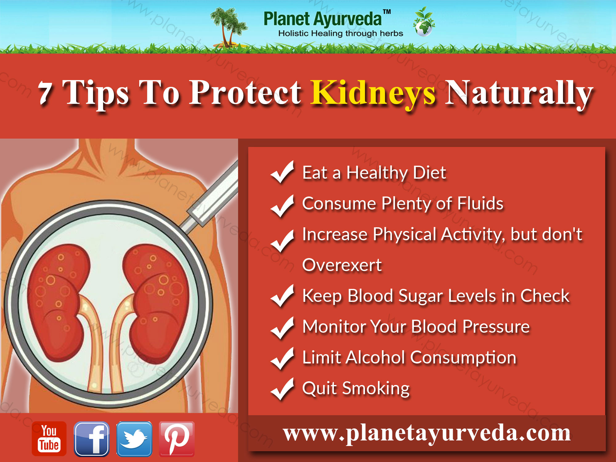 tips-to-protect-kidneys