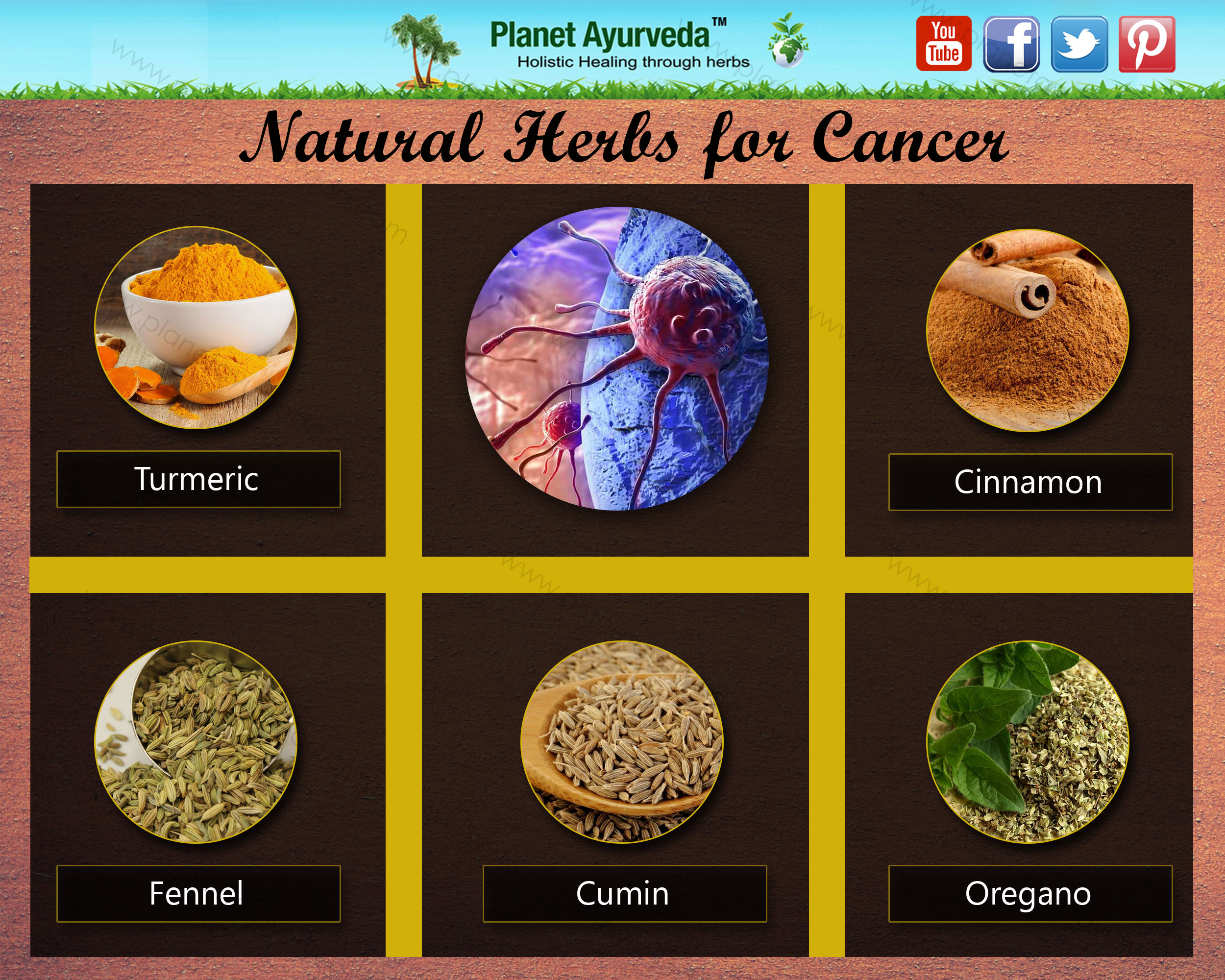 Natural Herbs for Cancer