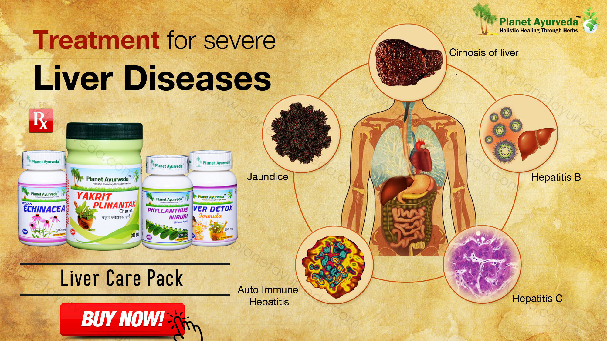 Treatment-of-liver-diseases