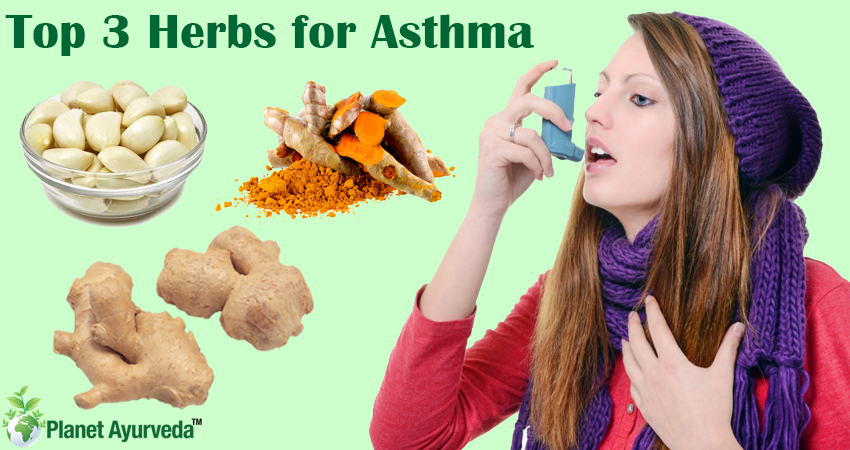 Top 3 Herbs to Manage Asthma