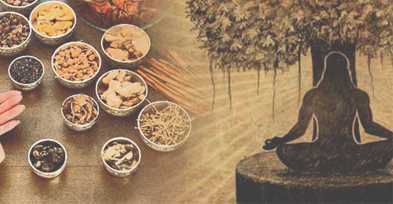 Health Benefits of Ayurvedic Herbs