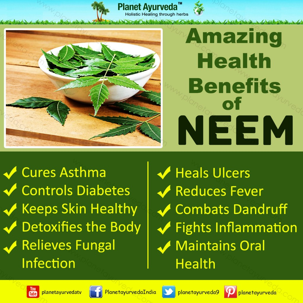 Amazing Health Benefits of Neem