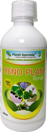 Herbal Remedy for Urinary Tract Infections (UTI)