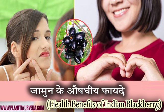 Health Benefits of Indian Blackberry