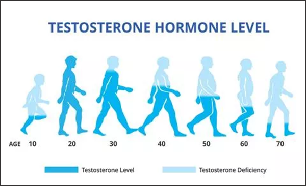 low bioavailable Testosterone leve