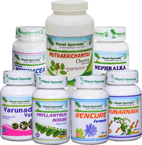Herbal Remedies for Chronic Kidney Disease